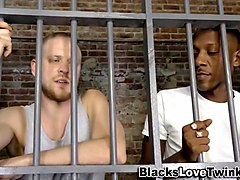 prisoner axamination gay